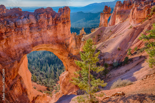 Poster Koraal Natural Arch in Bryce Canyon National Park