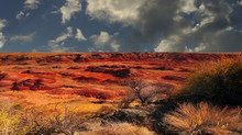 The Beautiful Painted Desert