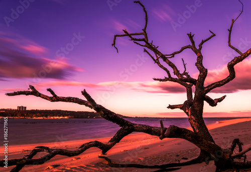 Cadres-photo bureau Prune Mystical sunrise on the beach