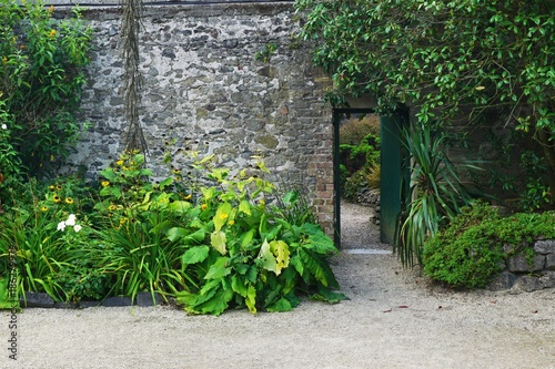 Fotografie, Tablou  Secret garden doorway through stone wall