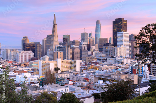 San Francisco Skyline in Pink and Blue Skies. Ina Coolbrith Park, San Francisco, California, USA.