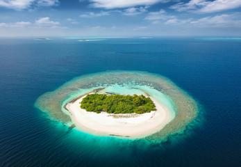 Fototapeta Unbewohnte, tropische Insel mit Korallenriff und Sandstrand auf den Malediven