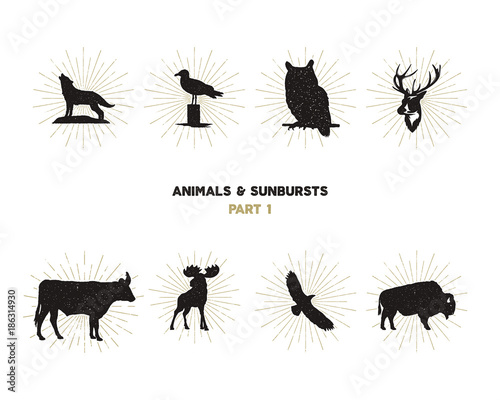 Photo  Set of wild animal figures and shapes with sunbursts isolated on white background