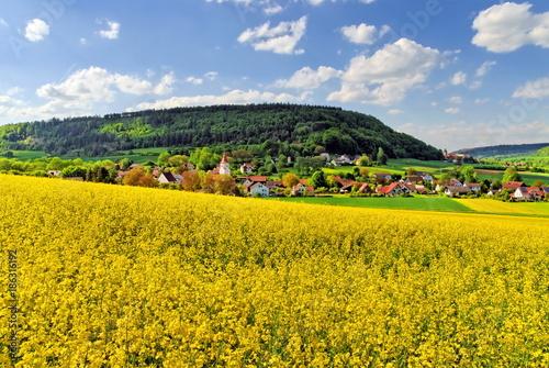 Foto op Plexiglas Landschappen Biberbach bei Beilngries im Altmühltal