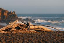 Driftwood Beach In Cambria Dur...