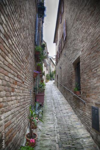 Fotobehang Smal steegje Vicolo stretto nelle Marche, paesino