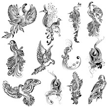 Tattoo Art Design Of Bird Collection