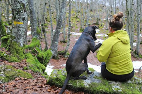 Photo Stands Panther chica joven con perro jugando en el bosque 4M0A2680-f17