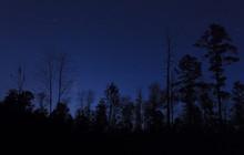 Starry Night In North Carolina