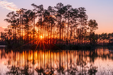Sunset In The Everglades Of Fl...