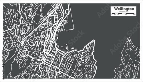 Fotografie, Obraz Wellington New Zealand City Map in Retro Style. Outline Map.