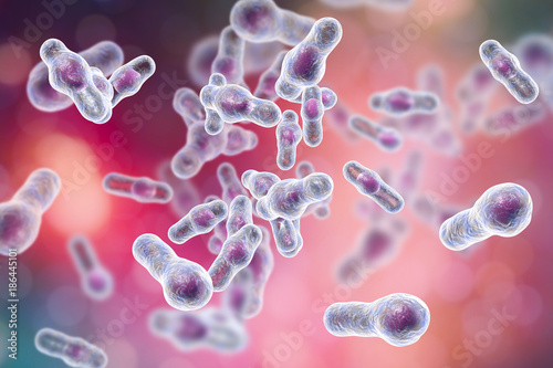Clostridium difficile bacteria, 3D illustration Tablou Canvas