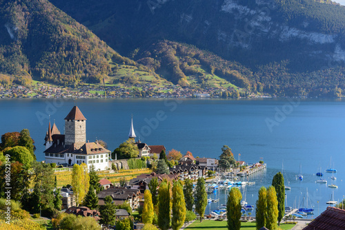 Fotografie, Obraz  View of lake Thun in Switzerland during autumn season from Spiez train station