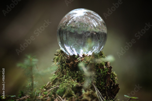 Crystal ball. A magical accessory in the woods on the stump. Rit Canvas Print