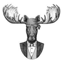 Moose, Elk Wild Biker, Pirate Animal Wearing Bandana Hand Drawn Image For Tattoo, Emblem, Badge, Logo, Patch, T-shirt