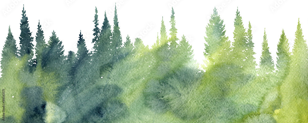 Fototapety, obrazy: watercolor landscape with trees