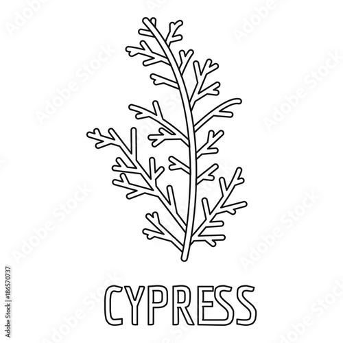 Canvastavla  Cypress leaf icon