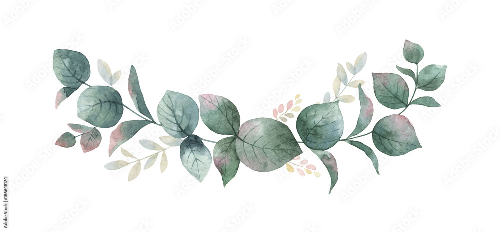 Fototapety, obrazy: Watercolor vector wreath with green eucalyptus leaves and branches.