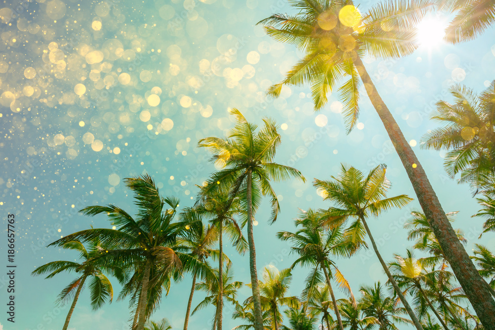 Palm trees with party lights glitter bokeh effect