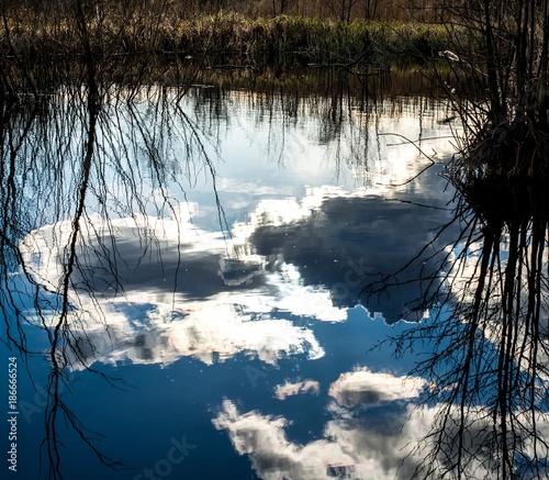 Foto auf Acrylglas Wald im Nebel Wolkenspiel