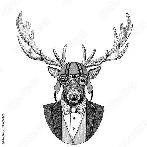 deer-animal-w-marynarce-z-muszka-i-kaskiem-motocyklowym-lub-kasku-helmu-elega
