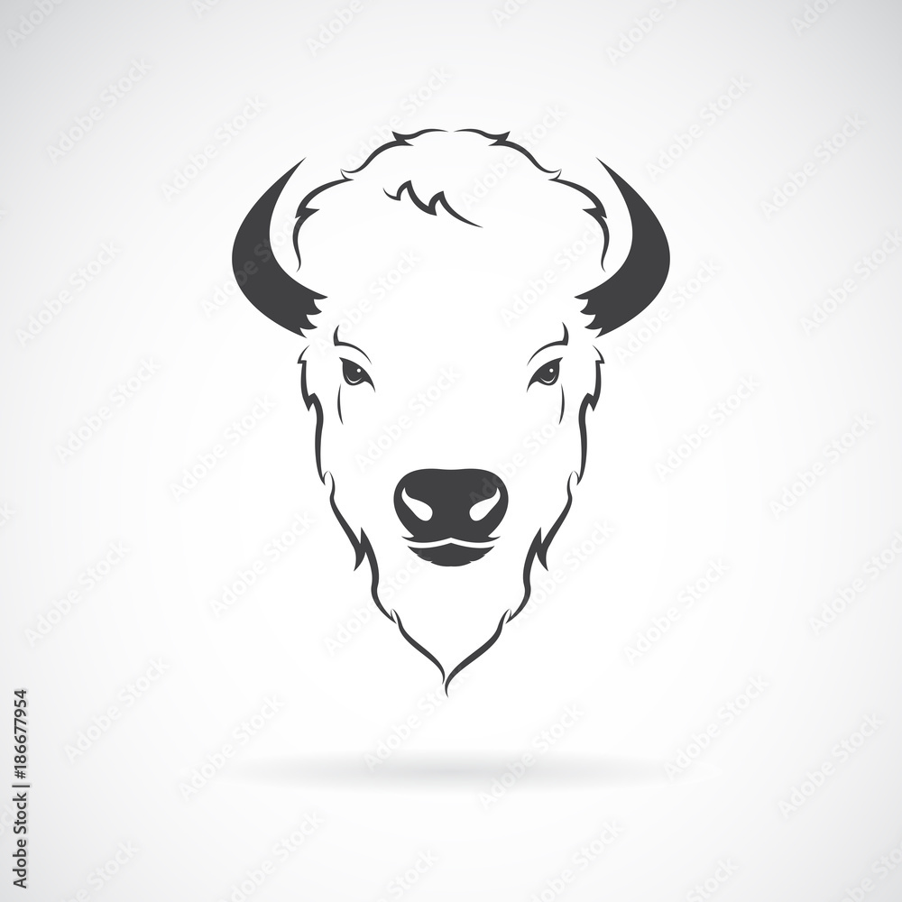 Fototapeta Vector of a buffalo head design on white background. Wild Animals.