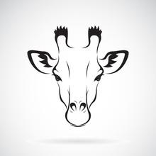 Vector Of A Giraffe Head Desig...