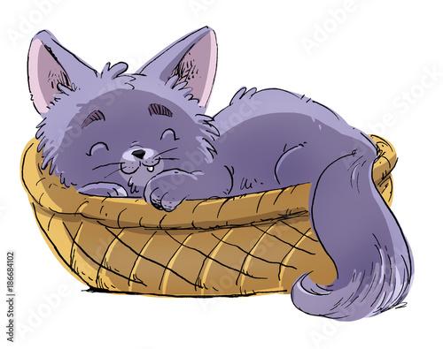 gato en una cesta Fototapeta