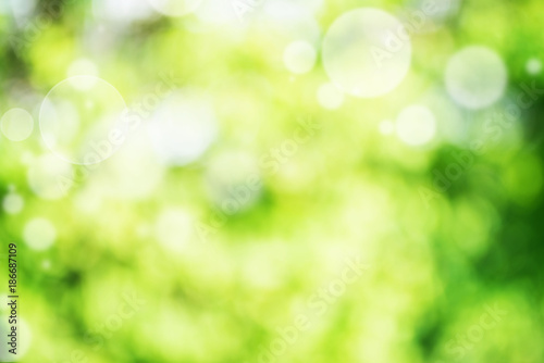 Fototapety, obrazy: Abstract green bright bokeh background