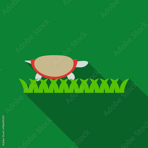 Fotografie, Obraz  Turtle, turtle with shell in the grass