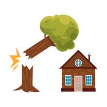 Broken Tree Falling On Cottage...