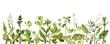 Leinwandbild Motiv watercolor drawing green leaves and plants