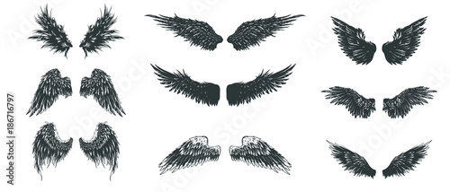 Foto  Wings set. Hand drawn detailed wings collection.