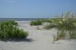 St. Simons Island, GA East Beach Sand Dunes