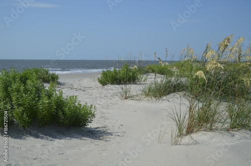 Cuadros en Lienzo St. Simons Island, GA East Beach Sand Dunes