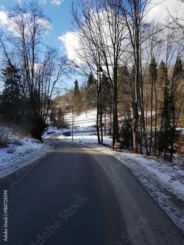 Fotografie, Obraz  Droga w zimie