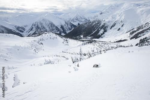 Foto op Plexiglas Alpinisme Young men ski touring in the mountains
