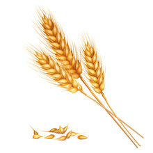 Realistic Wheat Composition