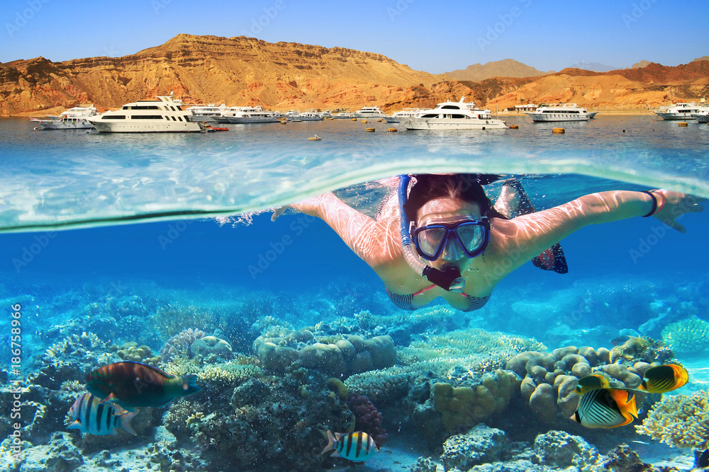 Fototapeta Young woman at snorkeling in the tropical water