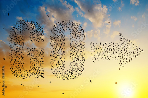 Vászonkép  Silhouette of birds flying in text go and arrow formation at sunset sky