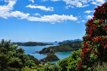Scenic Views Of Bay Of Islands