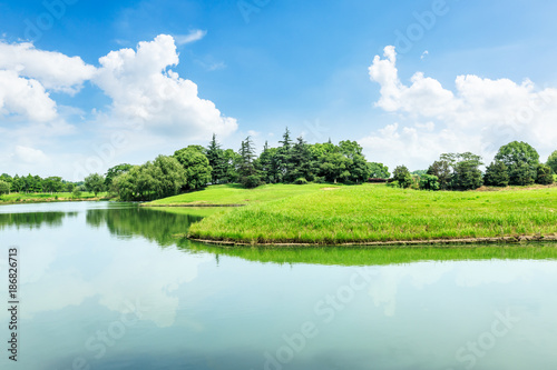 Fototapeta green meadow and trees with lake landscape in the nature park,beautiful summer season obraz na płótnie