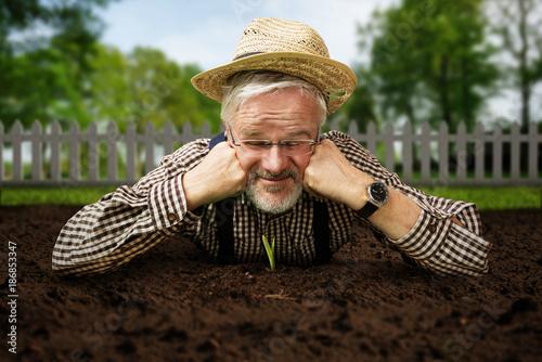 Canvastavla Gärtner guckt Pflanze beim Wachsen zu