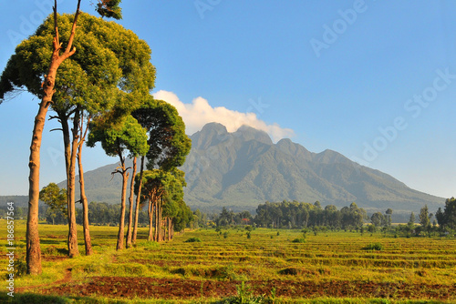 Pejzaż  Gór Virunga w Rwandzie