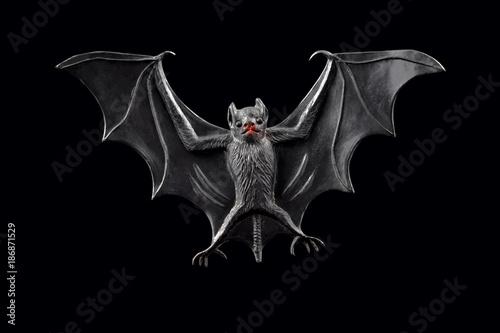 Bat stock images. Bat toy on a black background. Halloween decoration bat
