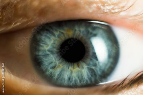 Fotobehang Macrofotografie Human Female eye macro. Closeup shot of female gray - blue colour eye with day