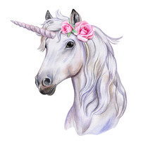 Unicorn With A Wreath Of Flowe...