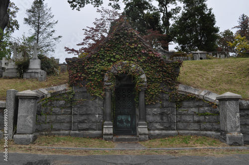 Fotografie, Obraz Old Stone Mausoleum Overgrown with Ivy in a Cemetery