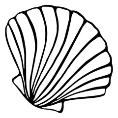 Fototapeta Monochrome black and white sea shell seashell silhouette ink line art sketch isolated vector