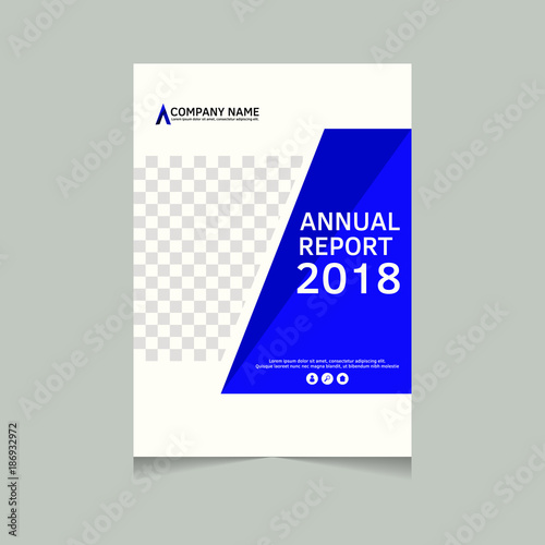 Annual Report Flyer Presentation Brochure Front Page